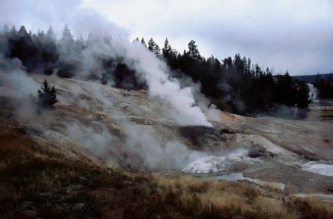 142 Norris Geyser Basin