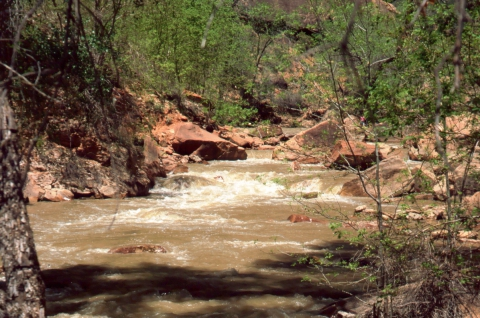 433 Virgin River