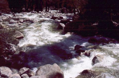 508 Yosemite River