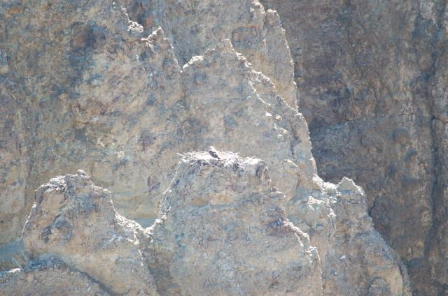 Amerika 2006 596