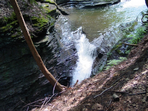 Buttermilk Falls10