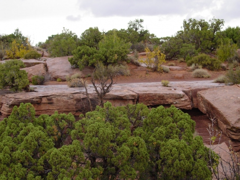 vakantie 2003 Death Horse Point SP 3