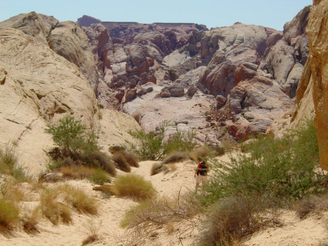 vakantie 2003 Valley of Fire1